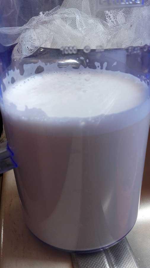Γάλα-αμυγδάλου 12 mamameli